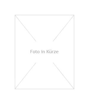 Gartenbrunnen Marmorkugel grau-weiß 40 LED