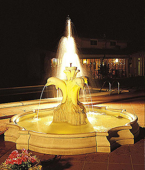 Springbrunnen Fontana Dallas - Bild 01